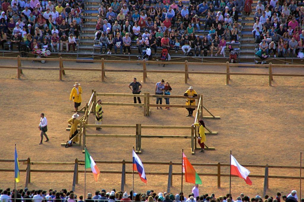 Marshals en Combate Medieval