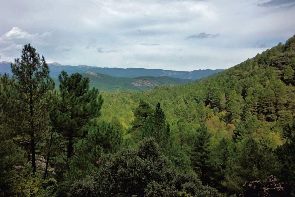 vistas-del-parque-natural-de-los-calares