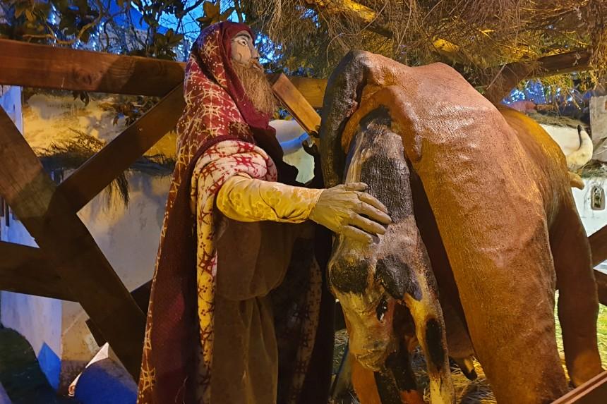 pastor atendiendo un parto en el Belen del Escorial