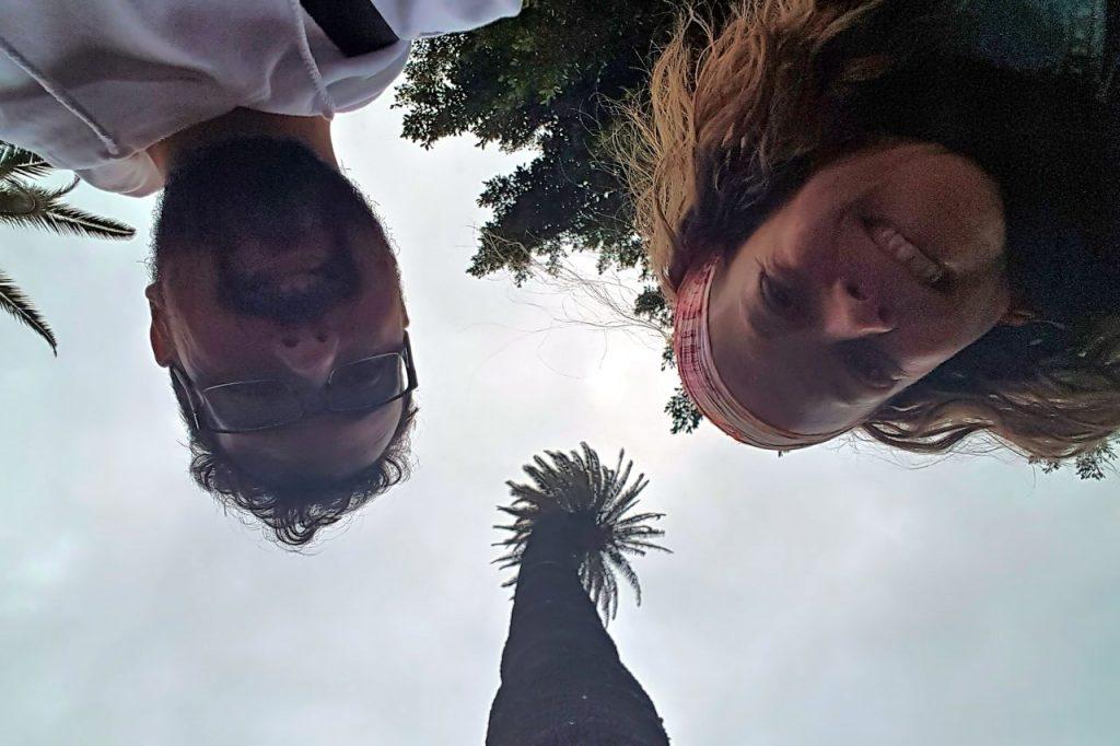 Palmera de Paquesito en Gran Canaria