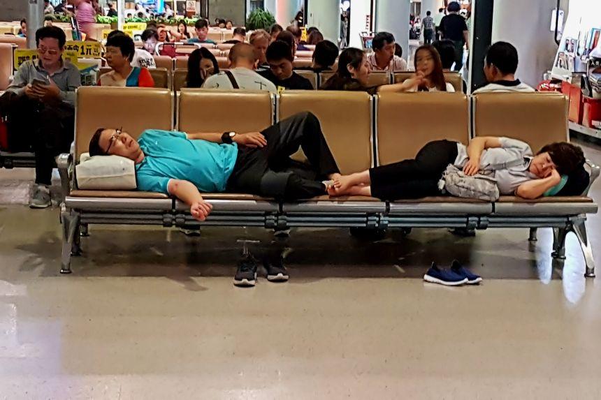 chinos durmiendo