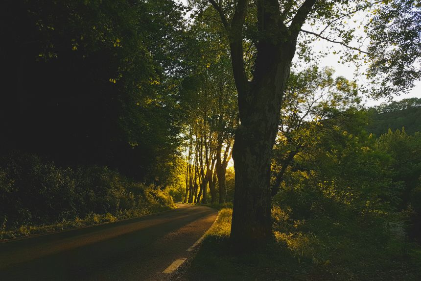 carretera por el Valle del Pas