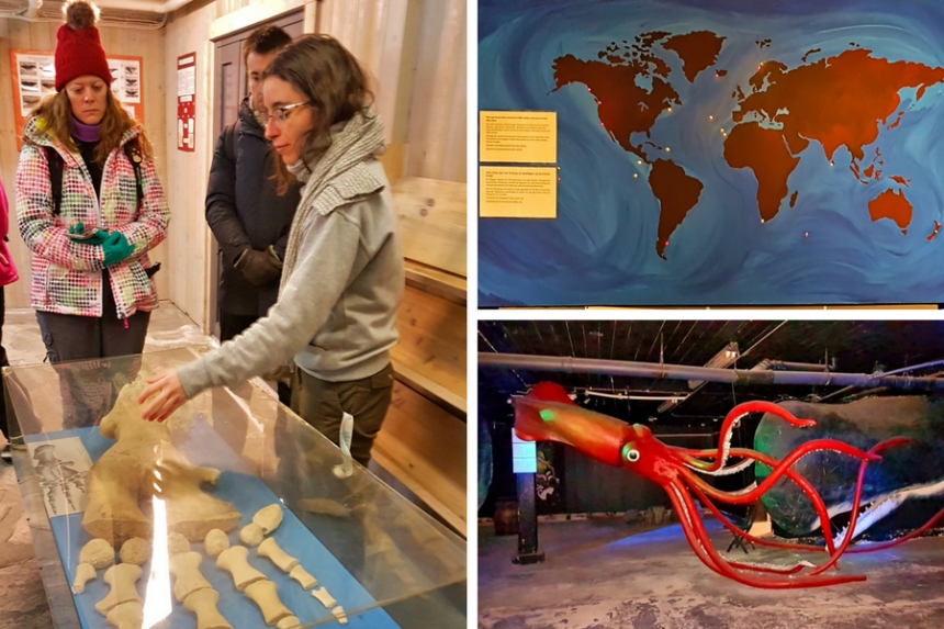 Whale Museum en Andenes, Vesteralen