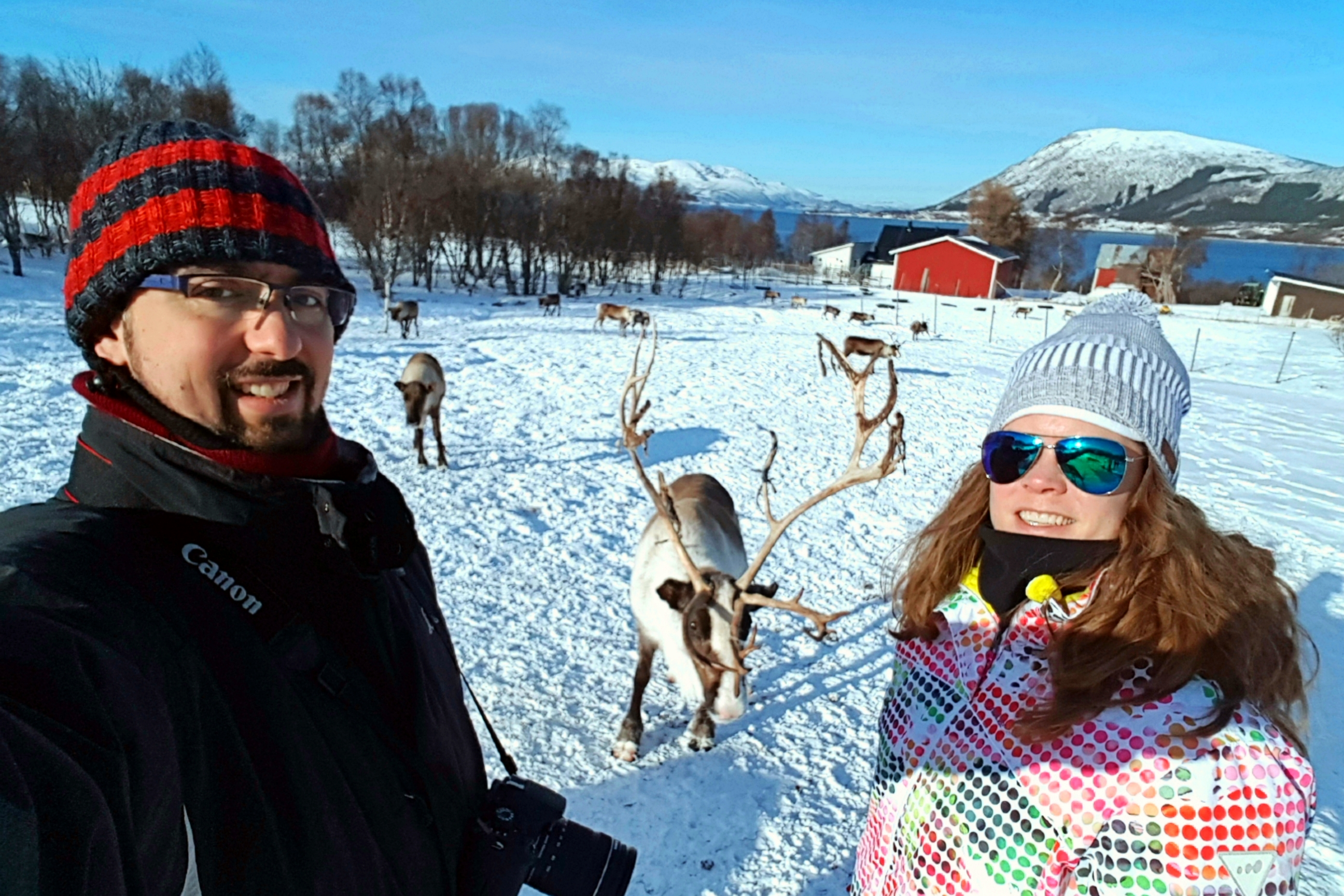 selfie con un reno de inga sami siida
