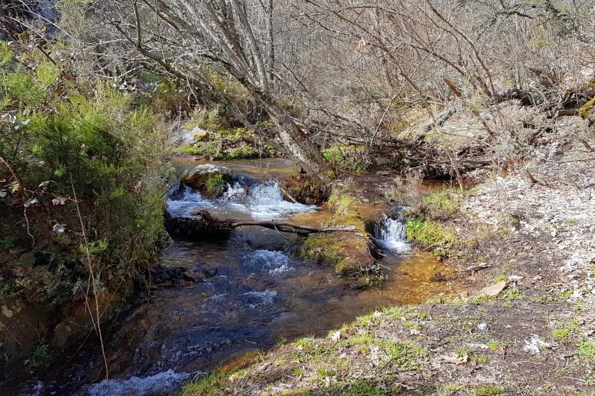 Arroyo de la Fuentecilla