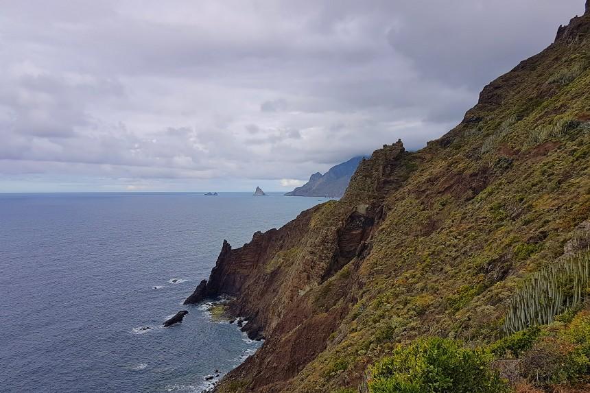 Ladera del Roque Marrubial en Anaga