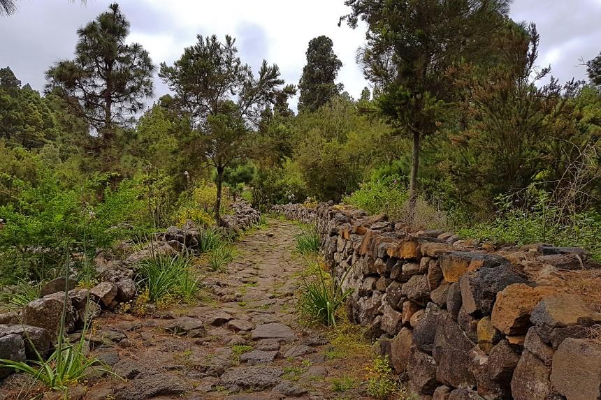 Camino Real en Tenerife