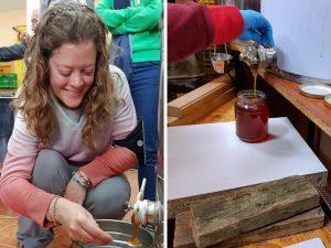 apicultor por un día en el taller de miel