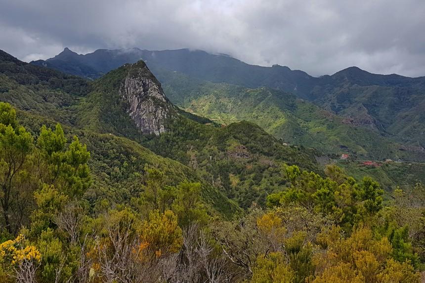 Roque Negro