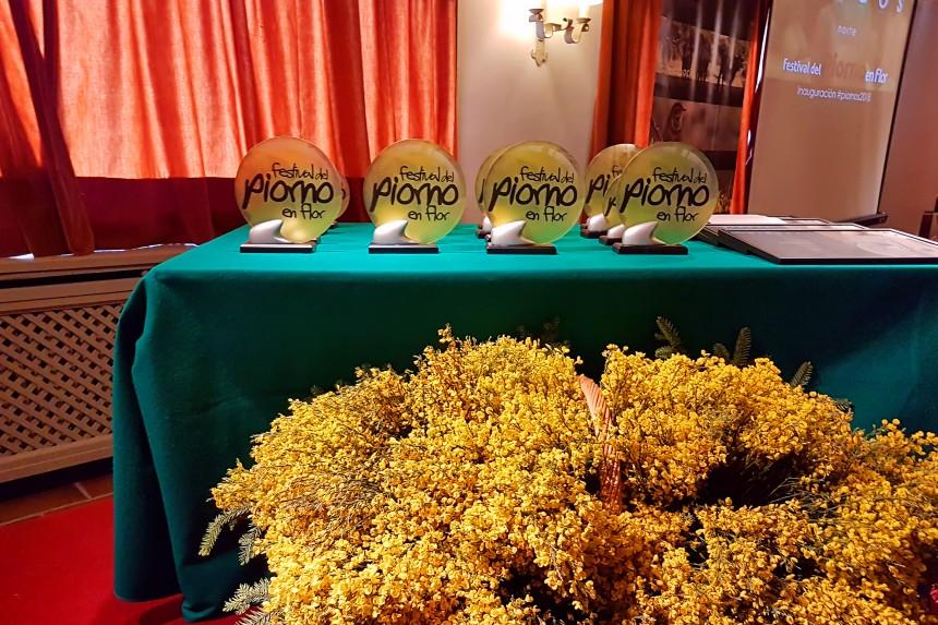 premios del festival del Piorno en flor