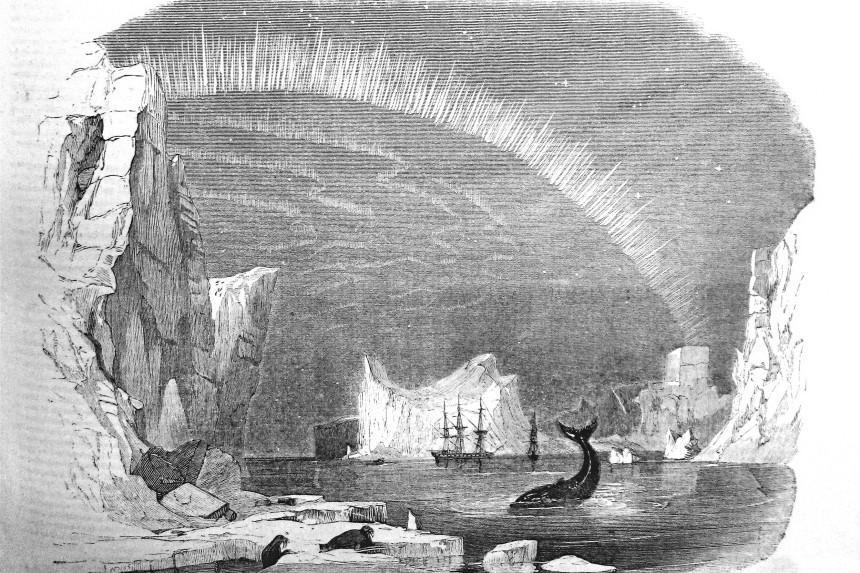 aurora boreal y ballena