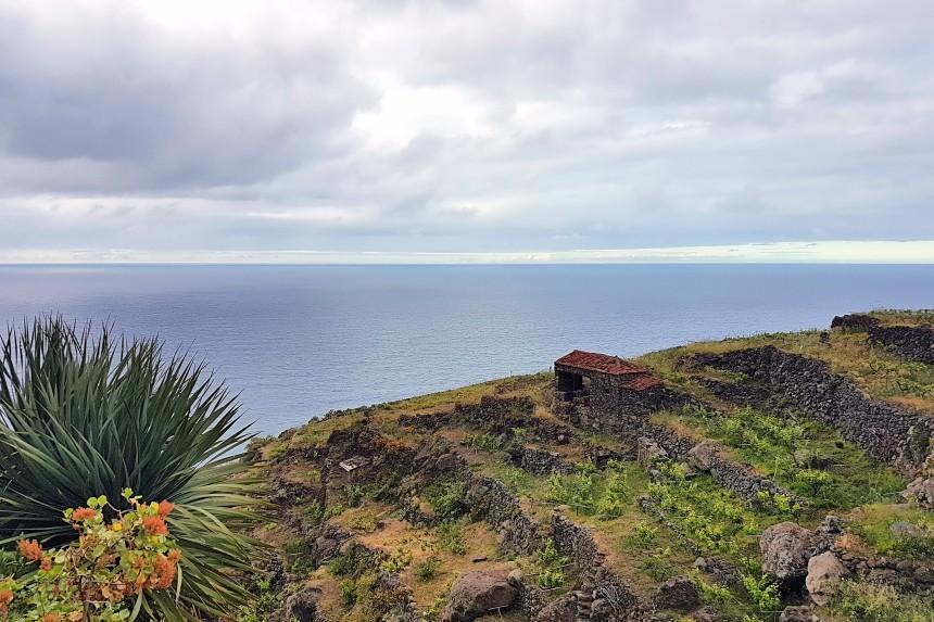 viñedos de Tenerife en Anaga