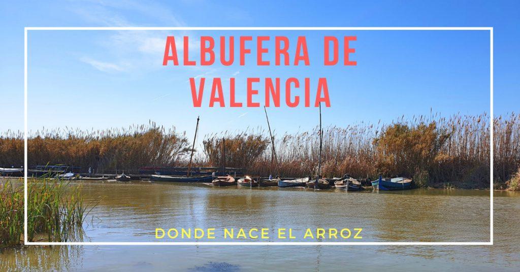 Albufera de Valencia, donde nace el arroz