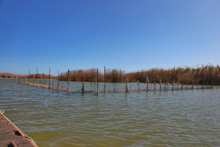 pesca tradicional con almadraba