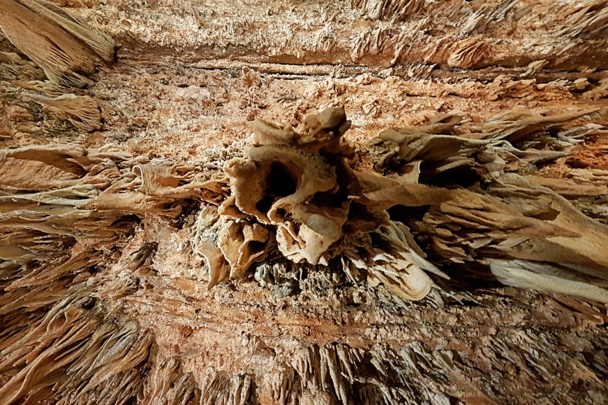 maravillas del techo de la cueva de Valporquero