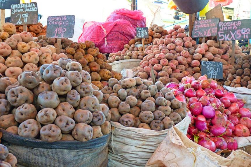 variedades de papas en el Perú - turismo gastronómico por el mundo