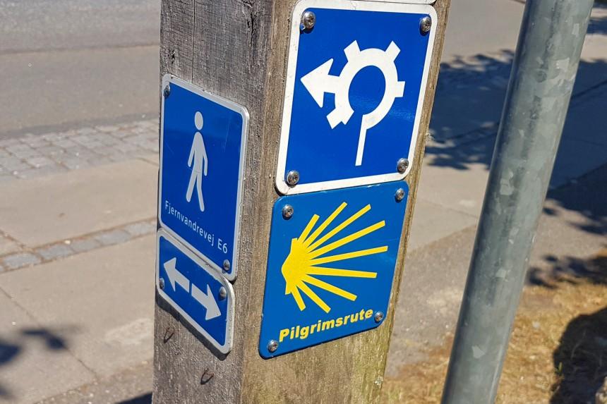 Camino de Santiago inglés por Roskilde