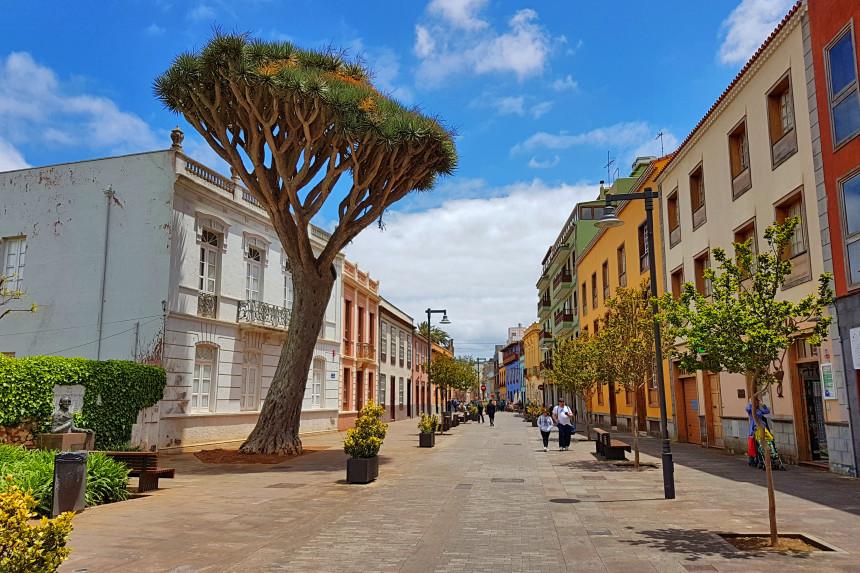 visita La Laguna y la Calle de San Agustín