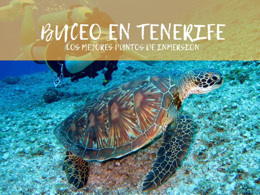 Buceo en Tenerife, los mejores puntos de inmersión