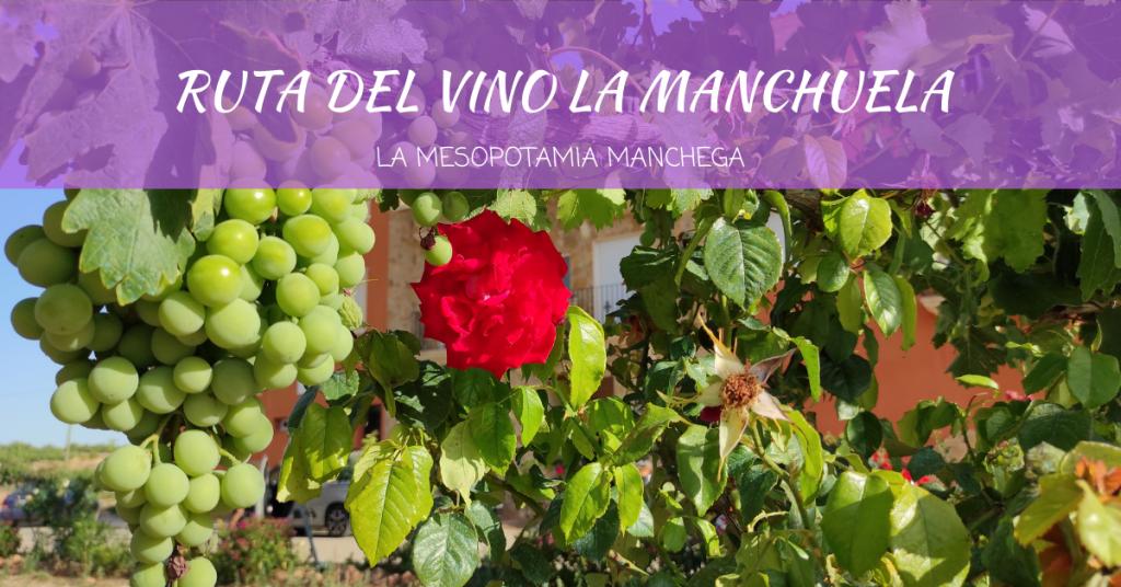 Ruta del Vino La Manchuela